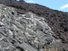 Pahoehoe Lava (foreground) A'a lave (background)