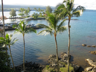 From balcony, Hilo Hawaiian Hotel